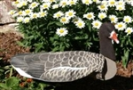 Specklebelly Goose Decoy